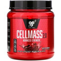 BSN, Cellmass 2.0, Advanced Strength, Post Workout, Arctic Berry, 1.09 lb (495 g) Zdrowie i Uroda