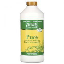 Buried Treasure, Liquid Nutrients, Pure Colloidal Minerals, 32 fl oz (946 ml) Zdrowie i Uroda