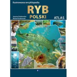 Ilustrowana encyklopedia ryb Polski - Grabowska Joanna  Poradniki i albumy
