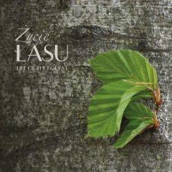 Życie lasu - Opracowanie zbiorowe  Poradniki i albumy