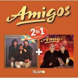 2 in 1 - Amigos Muzyka i Instrumenty