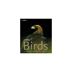 Collins Birds A Complete Guide to All British and European Species Kalendarze ścienne