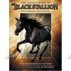 Serial The Adventures of The Black Stallion: The Complete First Season 4DVD Przygody Blackiego II wojna światowa