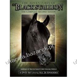 Serial The Adventures of the Black Stallion - The Complete Second Season Przygody Blackiego