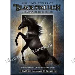 Serial The Adventures of the Black Stallion The Complete Third Season Przygody Blackiego