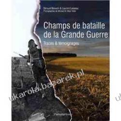 Champs de bataille de la Grande Guerre: Traces et témoignages Lotnictwo