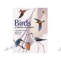 Birds of Britain and Europe Cleave Andrew MBE Clements Andy Kalendarze ścienne