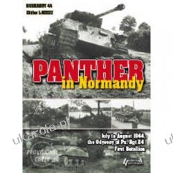 Panther in Normandy Didier Lodieu