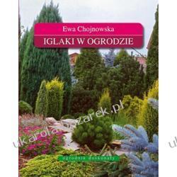 Iglaki w ogrodzie Ewa Chojnowska Kalendarze ścienne