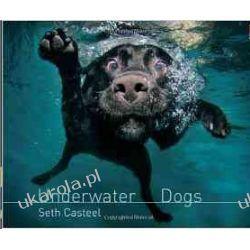 Underwater Dogs Seth Casteel  Kalendarze ścienne