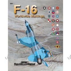 F-16 Worldwide Markings - Aircraft Specials series 6091
