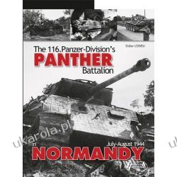Panther in Normandy