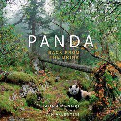 Panda: Back from the Brink Kalendarze ścienne