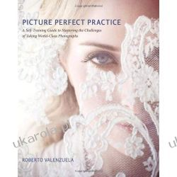 Picture Perfect Practice: A Self-Training Guide to Mastering the Challenges of Taking World-Class Photographs (Voices That Matter) Pozostałe albumy i poradniki