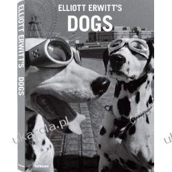 Dogs Kalendarze ścienne