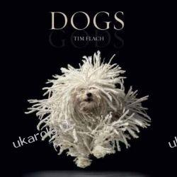 Dogs: Gods Marynarka Wojenna