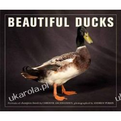 Beautiful Ducks Pozostałe
