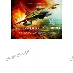 The Sword of David: The Israeli Air Force at War Kalendarze ścienne