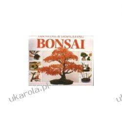A Step-by-Step Guide to Growing and Displaying Bonsai Marynarka Wojenna