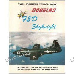Douglas F3d/F-10 Skynight (Consign) Zagraniczne