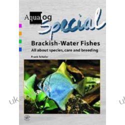 Brackish-Water Fishes All About Species, Care and Breeding  Ryby wód słonawych Kalendarze ścienne