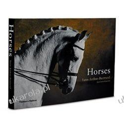 Horses Yann Arthus-Bertrand  Fotografowanie krajobrazów, przyrody