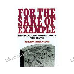 For The Sake Of Example (Hardback)