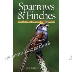 Sparrows and Finches of the Great Lakes Region and Eastern North America Chris G. Earley Kalendarze ścienne