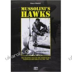 Mussolini's Hawks: The Fighter Units of the Aeronautica Nazionale Repubblicana from 1943 to 1945 Historyczne