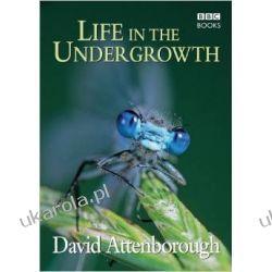 Life in the Undergrowth Kalendarze ścienne
