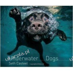 Underwater Dogs Motocykle