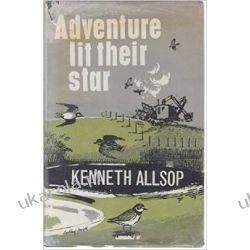 Adventure Lit Their Star Kalendarze ścienne