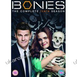 KOŚCI Bones - Season 10 [DVD] Filmy