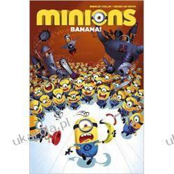 Minions : Volume 1 MINIONKI Annual Rocznik 2016