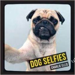 Dog Selfies Marynarka Wojenna