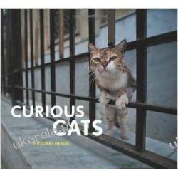 Curious Cats Pozostałe