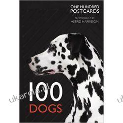 100 Dogs in a Box (Postcards) Pozostałe