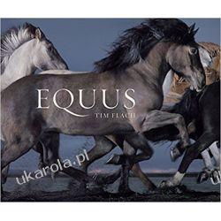 Equus (Mini) Zagraniczne