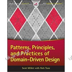 Patterns, Principles and Practices of Domain-Driven Design Informatyka, internet