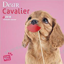 Kalendarz Myrna Dear Cavalier 2018 Wall Calendar  Pozostałe albumy i poradniki