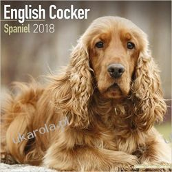 Kalendarz English Cocker Spaniel Calendar 2018
