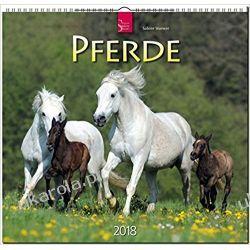 Kalendarz Konie Horses Calendar Pferde 2018 Wokaliści, grupy muzyczne