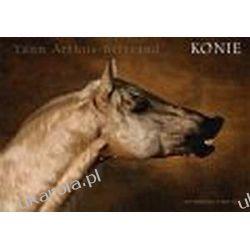 Konie Arthus-Bertrand Yann Horses Umundurowanie
