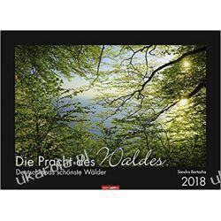 Kalendarz Las 2018 Forest Calendar Pozostałe