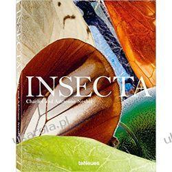 Insecta Kalendarze ścienne