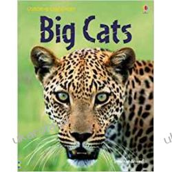Big Cats Zagraniczne