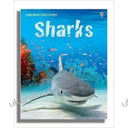 Sharks  Zwierzęta domowe i hodowlane