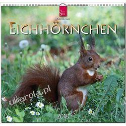 Kalendarz Squirrels 2018 Wiewiórki Calendar