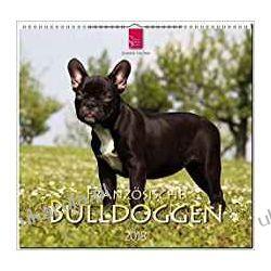 Kalendarz French Bulldog 2018 Calendar Buldogi Francuskie