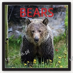Kalendarz Niedźwiedzie Bears 2018 Square Wall Calendar
